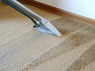 Move Out Carpet Cleaning Cleaning Brisbane
