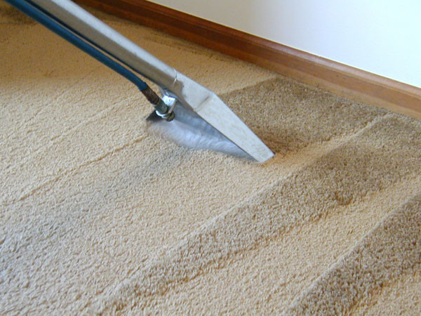 steam carpet cleaning - results home services