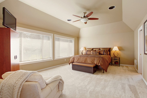 Healthy Carpets, healthy home