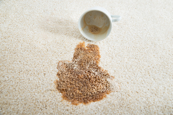 coffee stains on carpet - removing