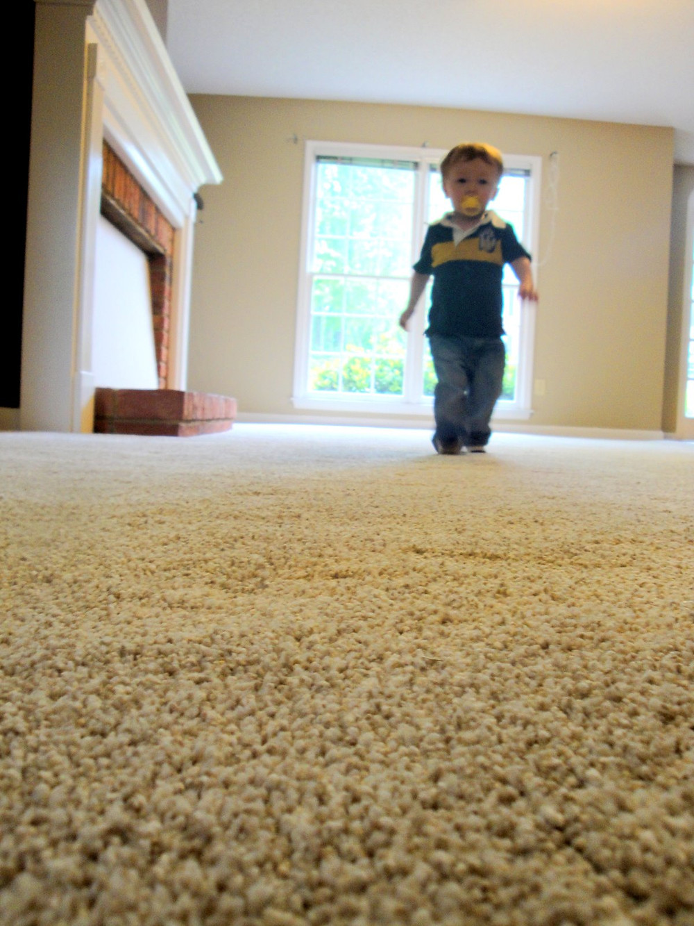 Brisbane steam carpet cleaners