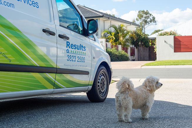 Pest Control and Termite Management for Beenleigh