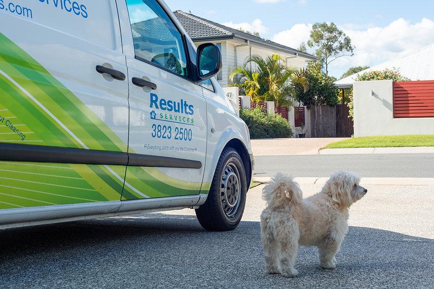 Results Pest Control Services Brisbane