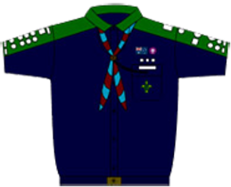 scoutsuniform.png