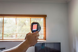 thermal imaging termite inspection.jpg