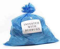 Place bed bug infested items in plastic bag
