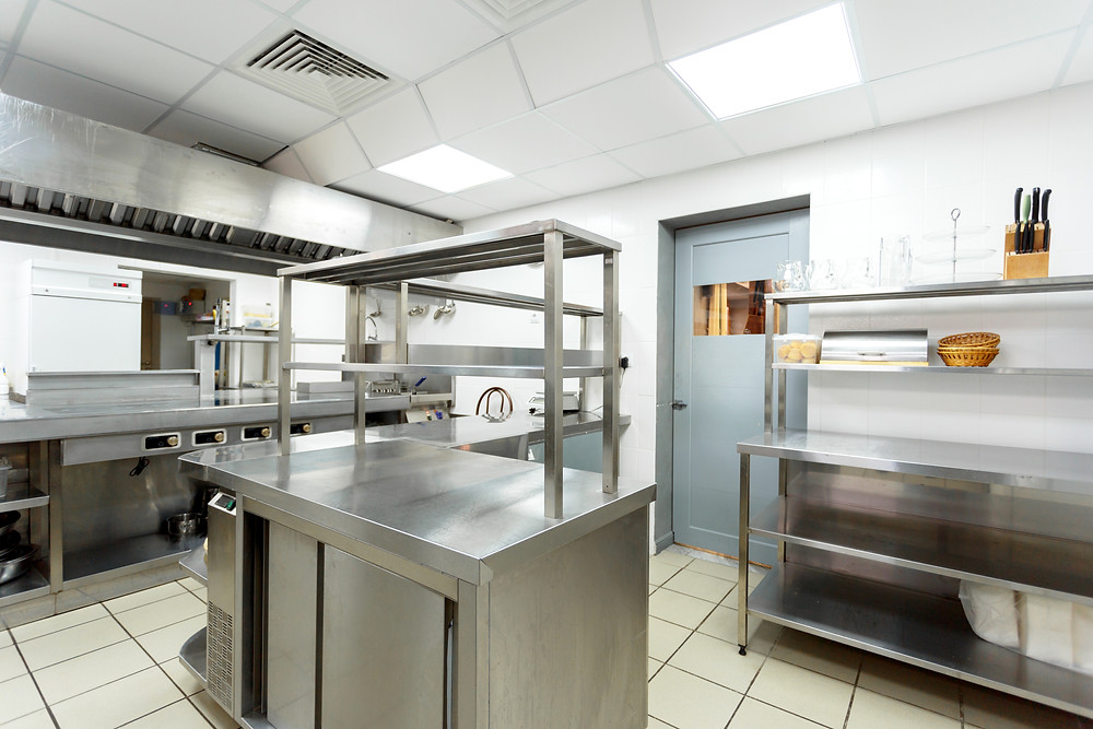 Fly Pest Control for a Restaurant kitchen
