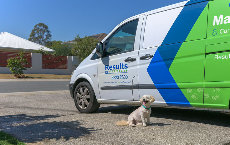 Pest Control Company Ransome