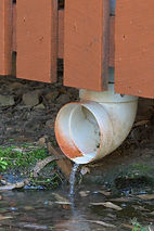 fix leaking pipes to prevent temites