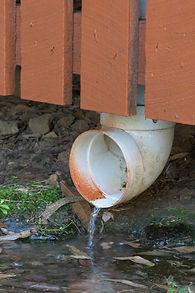 leaking pipe attracting termites