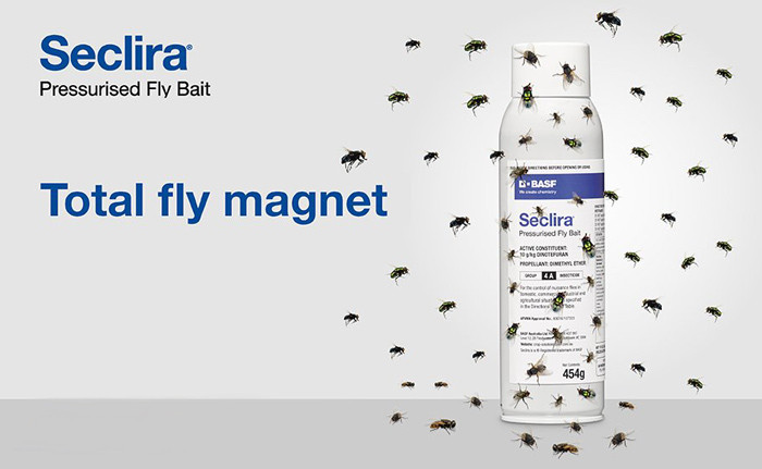 flies swarming around seclira fly bait can. Seclira logo upper left hand side corner