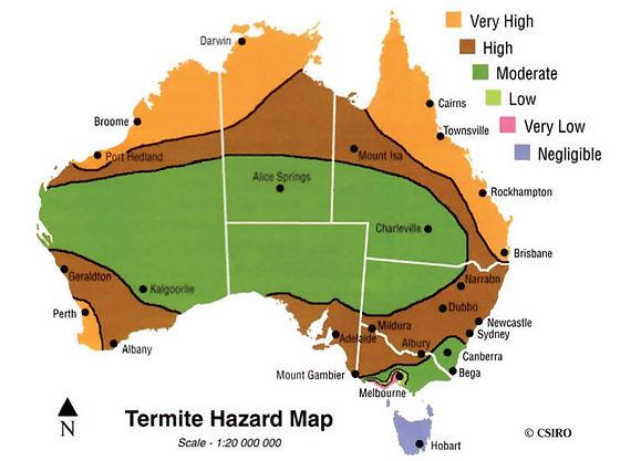 Termite hazard map - Brisbane termite treatments