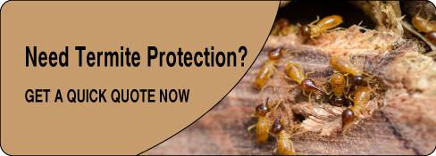 termite protection quote