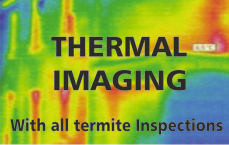 Thermal imaging with termite inspection