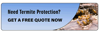 Termite-Protection quote
