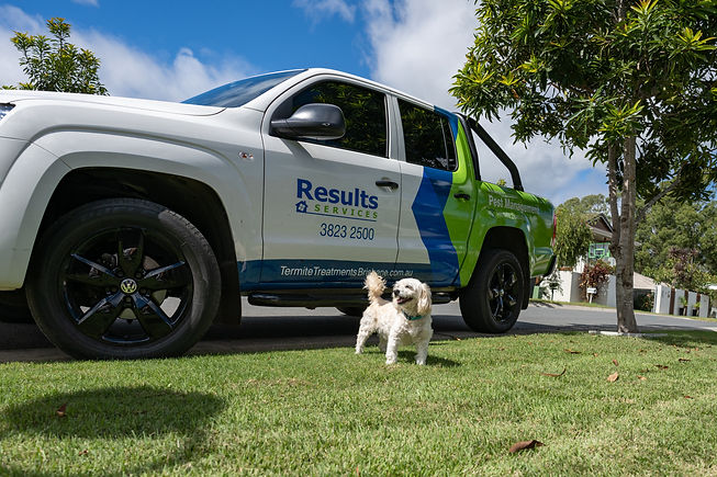Termite Inspectin and Pest Control Results Home Services
