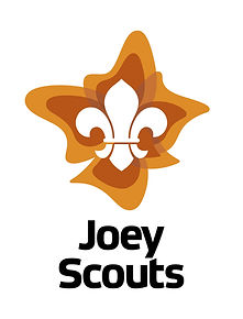 Scouts_Section_Joey_Master_Vert_FullCol_
