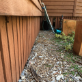 Garden mulch to close to house is a termite threat