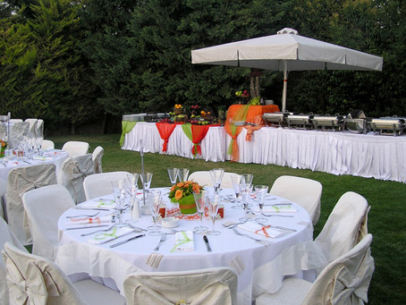 Planning an Outdoor Event without Mosquitoes or Ants?