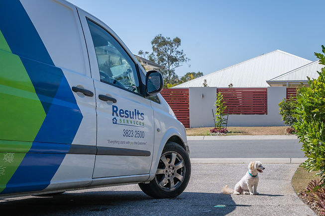 Termite Protection and Pest Control Company Manly