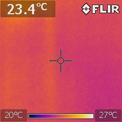 Thermal imaging help to determine termite activity