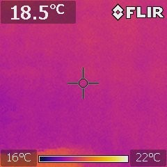 thermal imaging for termite detection
