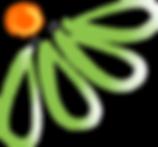 Flower logo transparent_lowres.png