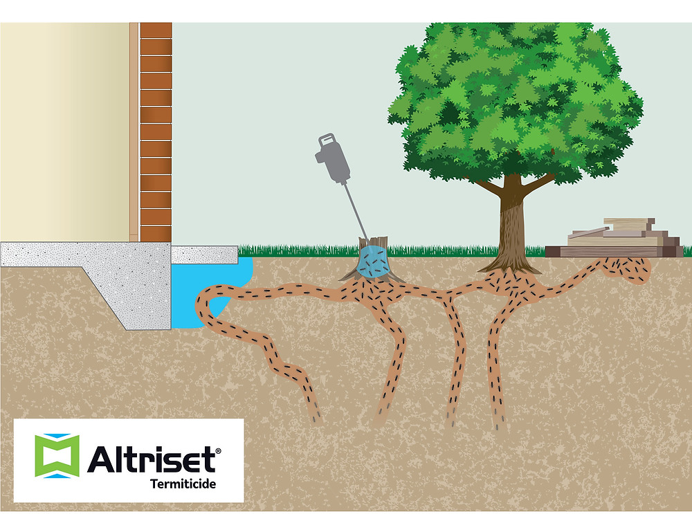 Altriset -environmentally friendly termite protection