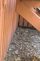 ensure mulch is not against house to prevent termites