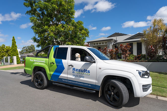 Results Termite and Pest Control Service