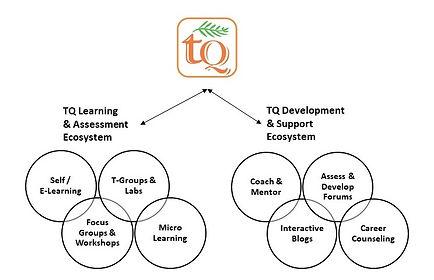 TQ Learning Framework 4.0.jpg