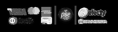 Medios de pago BN.png