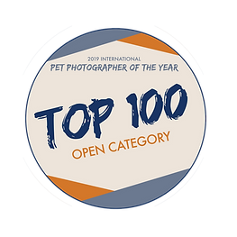 Top100Badge-open.png