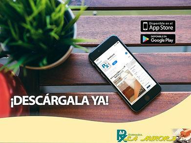 48387531_1422164104580632_66942450381105