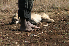 Severe drought in Mount Suswa.jpg