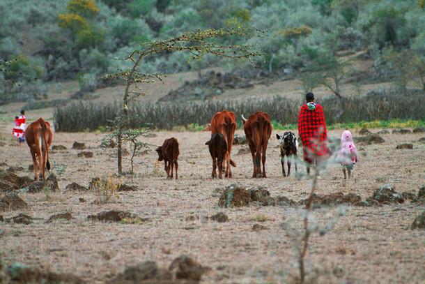 Maasai family 2014 Kenya.jpg