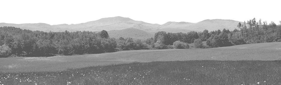 panoramic-Gray.jpg