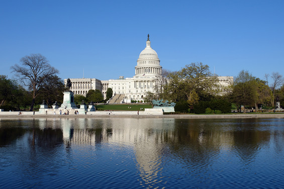 bigstock-US-Capitol-and-Capitol-hill-Wa-