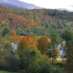 Stowe-Fall-770x293.jpg