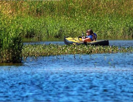 kayak-437419_1280-500x333.jpg