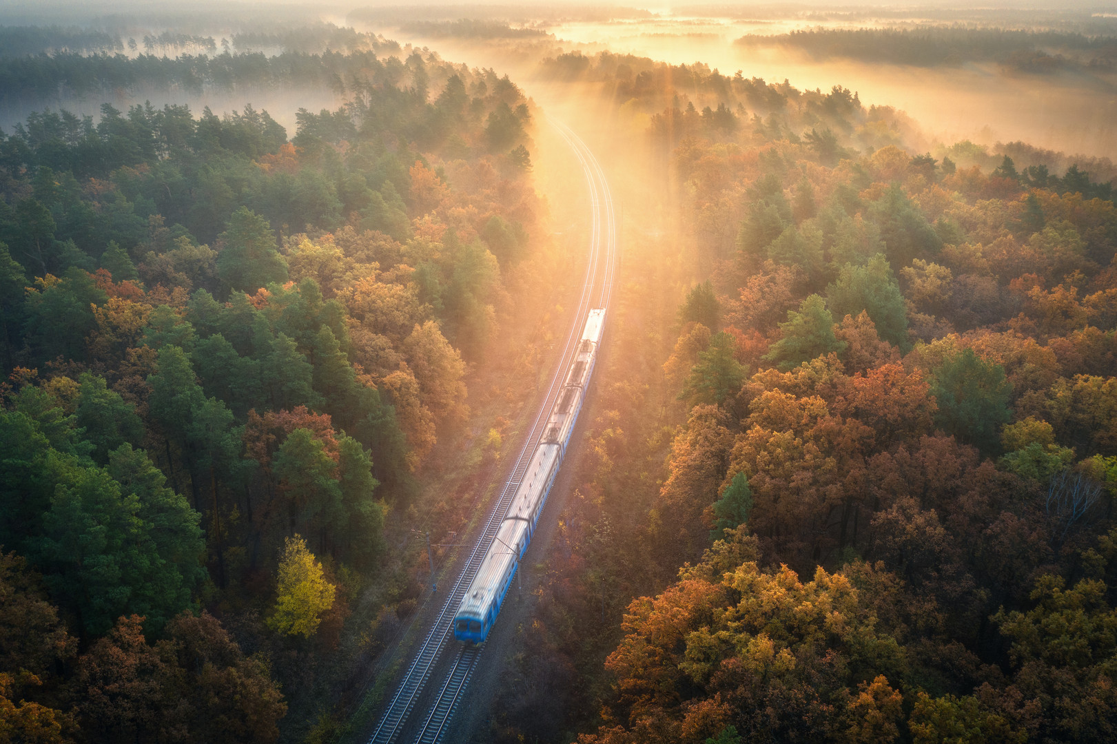 bigstock-Train-In-Beautiful-Forest-In-F-