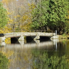 Vermont-Back-Roads-770x293.jpg
