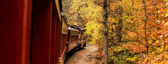 train-and-fall-trees-770x293.jpg