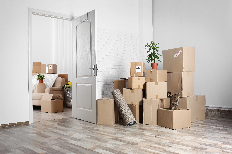 Pre-Move and Post Move Organizing