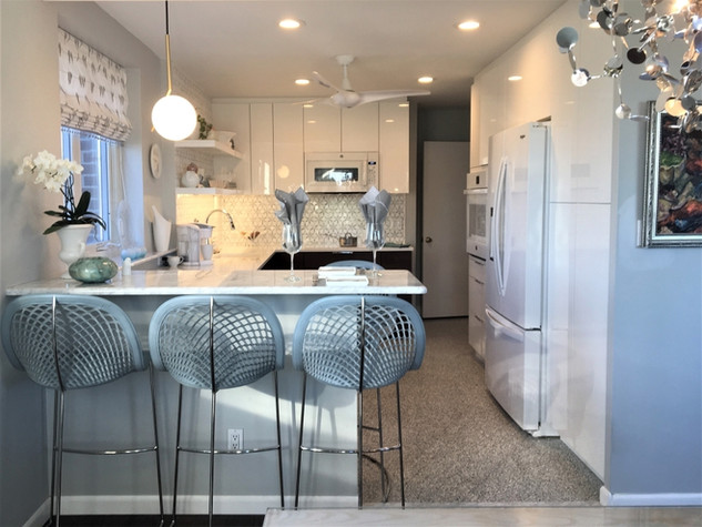 Penthouse Kitchen Remodel