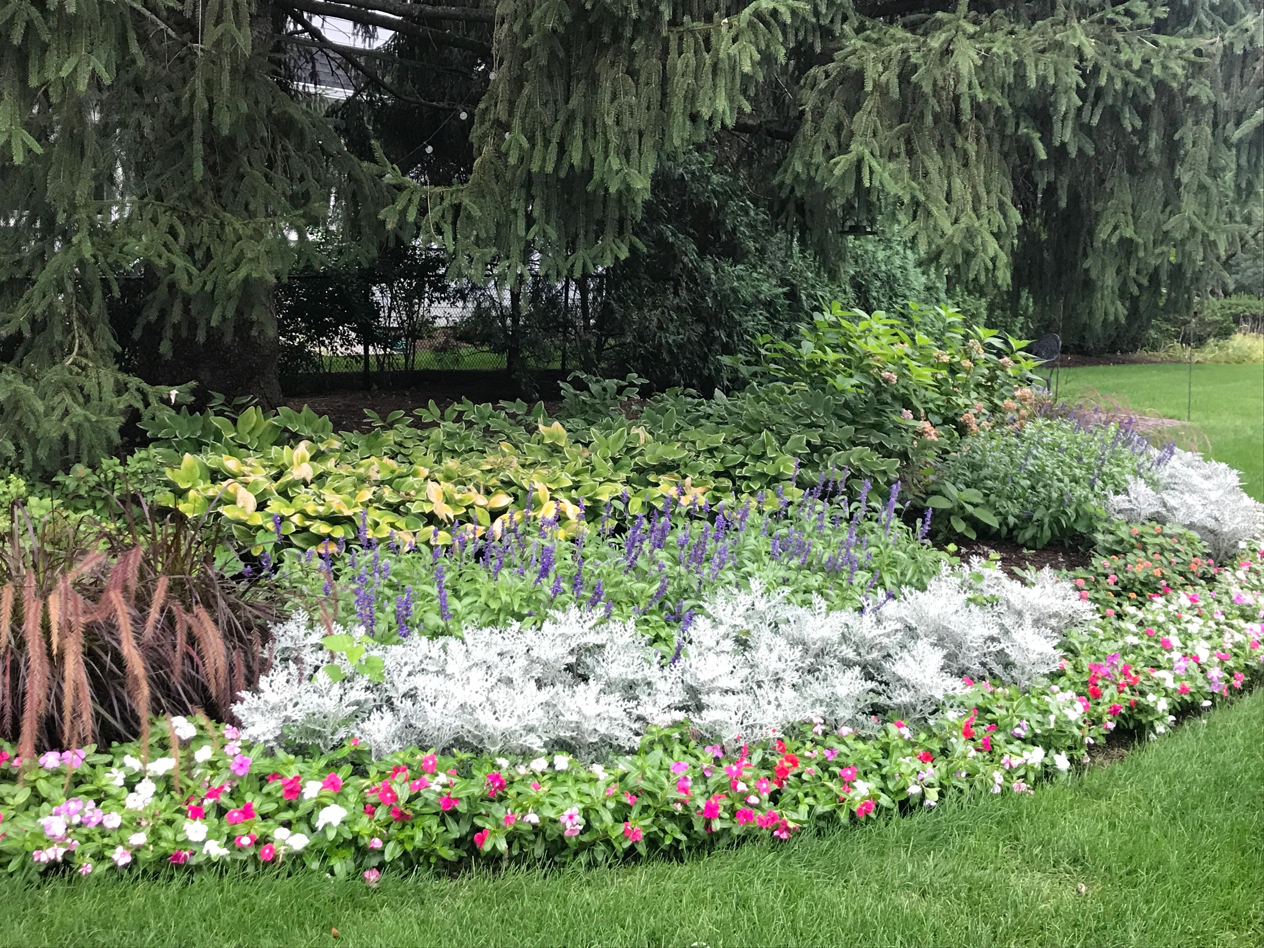 lawn & flower