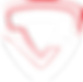 TFD TaifudoSCHILD-S-transparent.png
