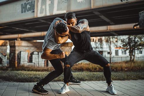 Kampfkunst2.jpg
