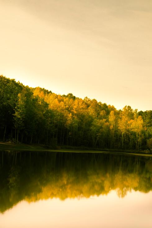 Landscapes (9 of 45).jpg
