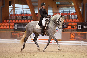 Championnat de France - Eclipse N